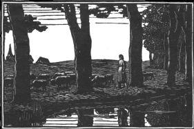 wood-engraving of Sheep